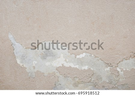 Excessive moisture can cause mold and peeling paint wall such as rainwater leaks or water leaks. #695918512