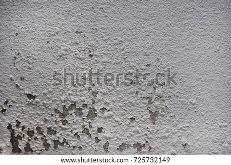 Excessive moisture can cause mold and peeling paint wallsuch as rainwater leaks or water leaks. #725732149