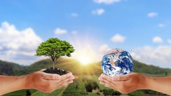 Exchange of planets in the hands of humans with young plants in the hands of humans, the concept of Earth Day and Conservation of the Environment. Elements of this image are decorated by NASA.