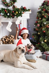 excited african american girl holding gift box while sitting near christmas tree with fluffy cat and labrador dog