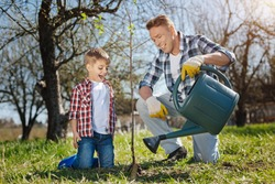 Excited father and son pouring fruit tree in garden