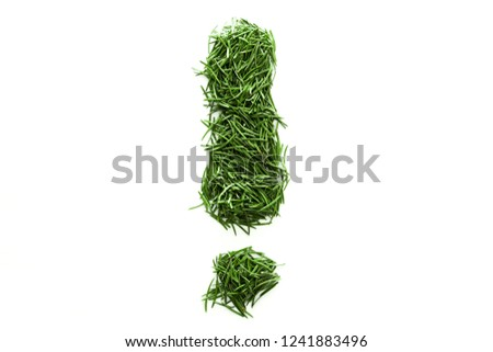 exclamation mark, signs and symbols are made of green grass isolated on white background #1241883496