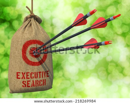 Executive Search - Three Arrows Hit in Red Target on a Hanging Sack on Green Bokeh Background.