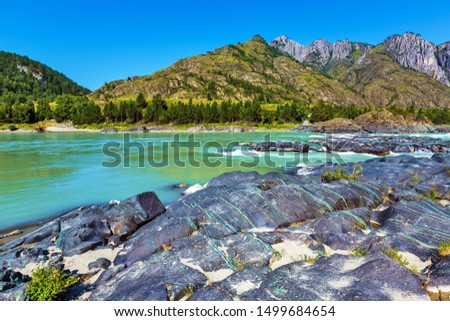 Exit colored stone by the river. Katun river, unfinished Katun hydroelectric station district, Chemalsky district, Altai Republic, southern Siberia, Russia