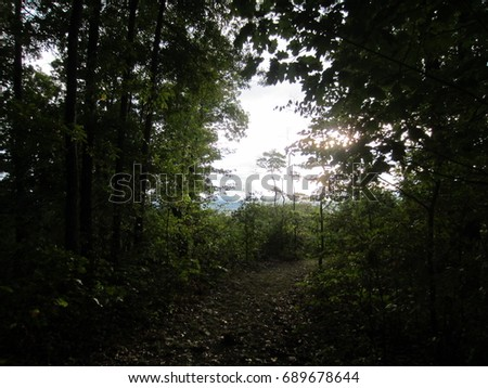 Exit the Woods #689678644
