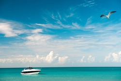 Exotic beautiful marine beach of Antigua St. Johns with boat on blue water and sky with small clouds and flying gull