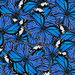 Exotic Blue Background Textured from Common Tiger Butterflies