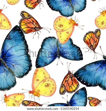 Exotic butterflies wild insect in a watercolor style. Seamless background pattern. Fabric wallpaper print texture. Aquarelle wild insect for background, texture, wrapper pattern or tattoo.