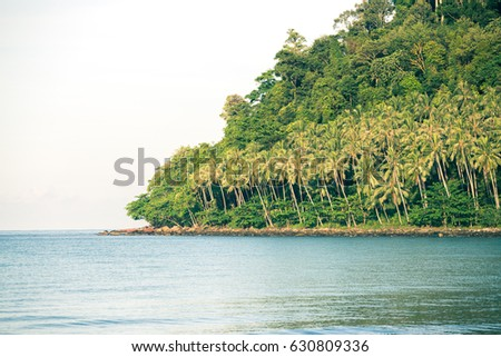Exotic coast of the with exotic palm trees on the golden sand, koh kood Islands #630809336