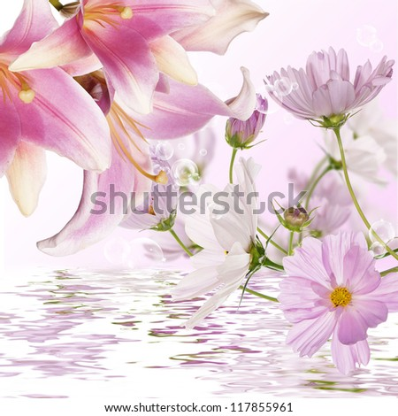 Exotic flowers.Flora background