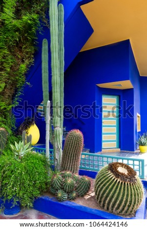 Exotic garden with cacti and colorful blue-yellow villa with an unusual geometry of construction. Jardin Majorel in Marrakech. Morocco.