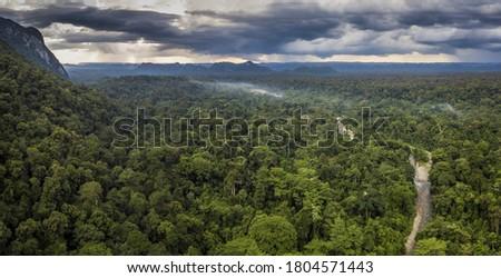Exotic rainforest landscape from gunung mulu national park borneo malaysia. Stock photo ©