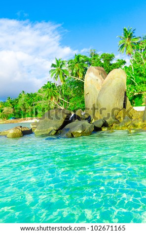 Exotic Shore Ocean
