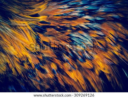 Shutterstock Exotic texture feathers background, closeup bird plumage. Red-brown and blue feathers for your natural pattern.