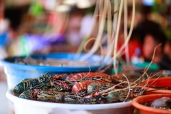 Exotic traditional seafood market on Boracay island in Philippines