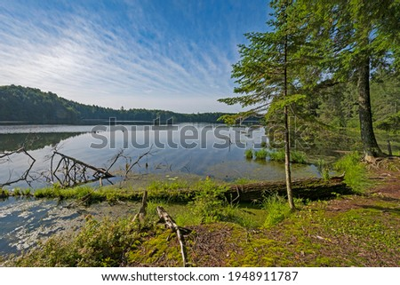 Expansive View on Crooked Lake in the Sylvania Wilderness in Michigan Stockfoto ©