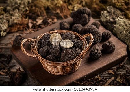 Expensive black truffles gourmet mushrooms in wicker basket Foto stock ©
