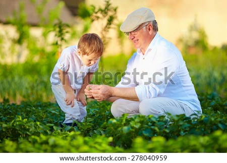 experienced grandfather explains grandson the nature of plant growth