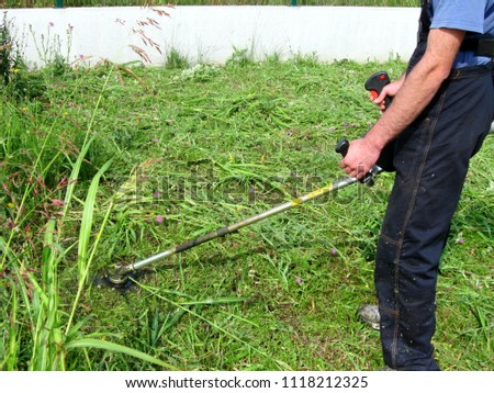 Experienced operator trimmer while mowing the grass in the yard takes care of its movements and the way it manages the trimmer blade #1118212325