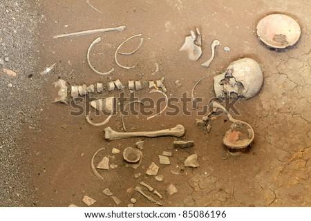 exploration of ancient human skeleton
