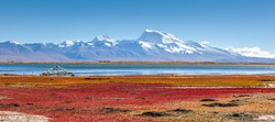 Explore the Qinghai-Tibet Plateau in China at an altitude of more than 5,000 meters, photograph the natural environment and wildlife of the plateau.