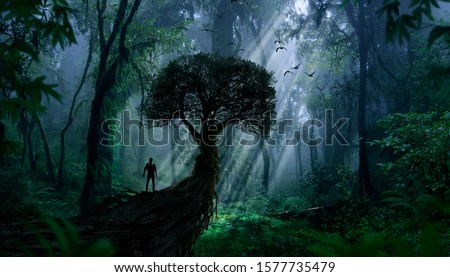 Explorer observing a jungle landscape Stock photo ©