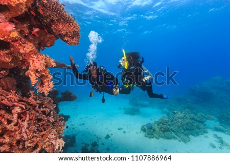 Explorer people underwater . Two adult person diving in first time on tropical reef with blue background, beautiful coral and small fish. Man pointing on top and holding woman by hand. #1107886964