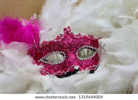 Expressions of Brazilian Carnival #1319644004
