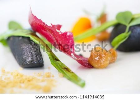 Exquisite dish, creative restaurant meal concept, haute couture food #1141914035