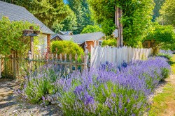 Exteriors of an old farmhouse building with lavender hot tub deck and outdoor seating