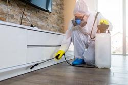 Exterminator in work wear spraying pesticide with sprayer.