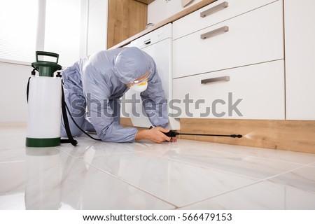 Exterminator In Workwear Spraying Pesticide With Sprayer #566479153
