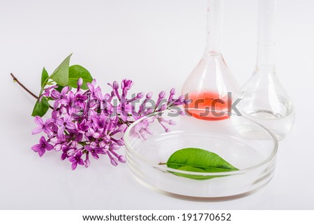 extraction of natural ingredients inperfumery
