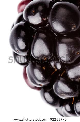 extreme macro of blackberry on white background