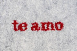 Extreme macro shot of the words te amo typed on white paper. Grungy textured bloody mood.. Spanish text.