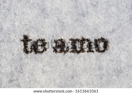 Extreme macro shot of the words 'te amo' typed with on white paper. Grungy textured mood. Love you in spanish