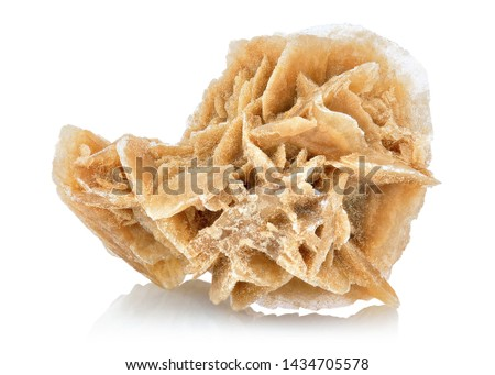 Extreme sharp and detailed photo of amazing Desert Rose specimen. Natural mineral closeup macro picture of stone cluster from sand - gypsum crystal on white background.