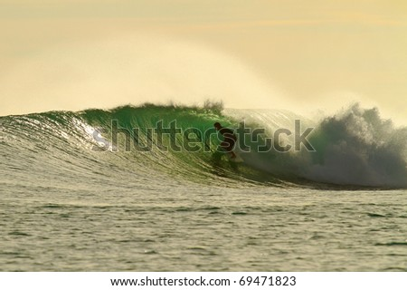 Extreme surfer on perfect golden wave
