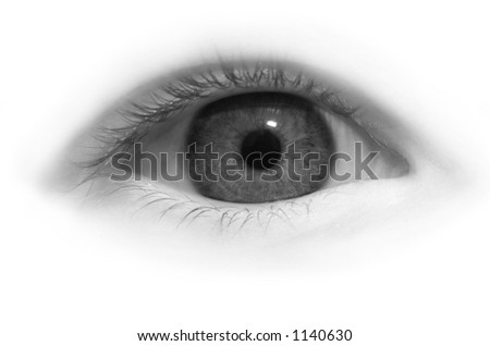 Eye close-up in black and white