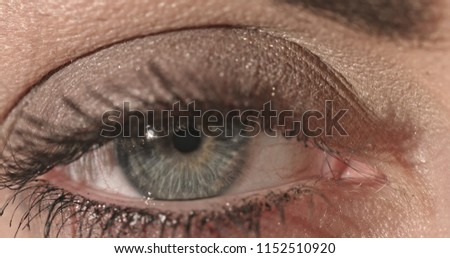 Eye iris macro close up