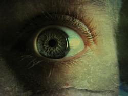 Eye macro with a vintage edit