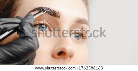 Eyebrow tint, master correction of brow hair women. ストックフォト ©