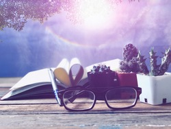 Eyeglasses,Cactus in small pots,blur Book page rolls,like shaped heart on wood table,blur beautiful Solar halo on bright sky and green leaves background,as outside view,with lens flare,selective focus