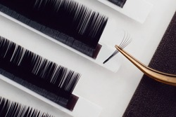 Eyelash extension procedure. Lashes set close up. Concept spa lash