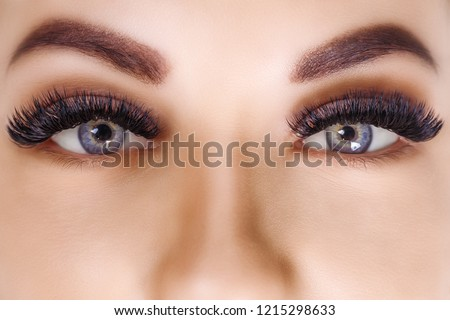 Eyelash Extension Procedure. Woman Eye with Long Eyelashes. Close up, selective focus. Hollywood, russian volume #1215298633