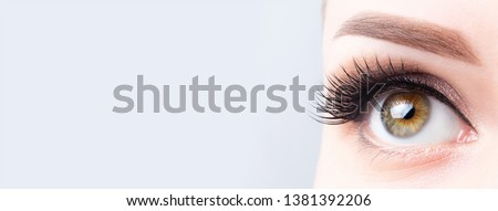 Eyelash lamination, extensions, microblading, tattoo, permanent, cosmetology, ophthalmology banner or background. Eye with long eyelashes, beautiful makeup and light brown eyebrow.
