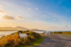 Eyeries on the Beara way in beautiful West Cork at sunset.