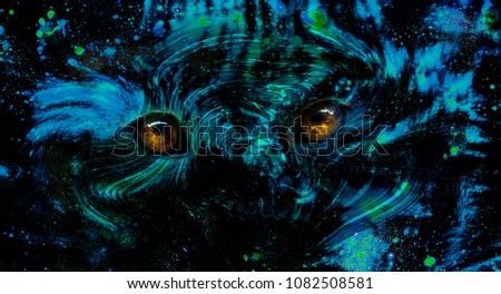 Stock Photo Eyes of a wild animal in space