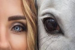 Eyes og girl and horse close up detail