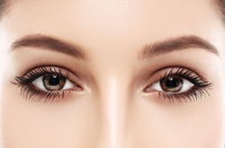 Eyes woman eyebrow eyes lashes